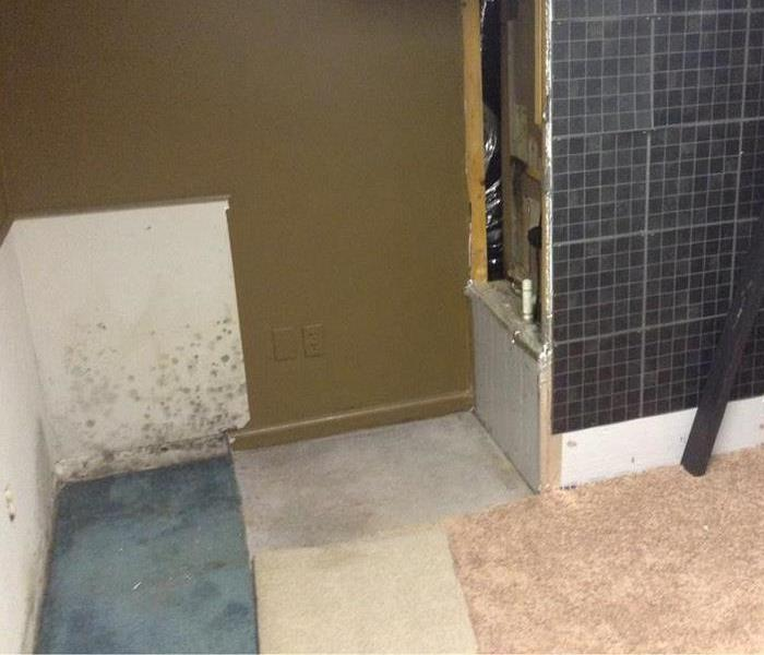 Mold After Water Heater Leak