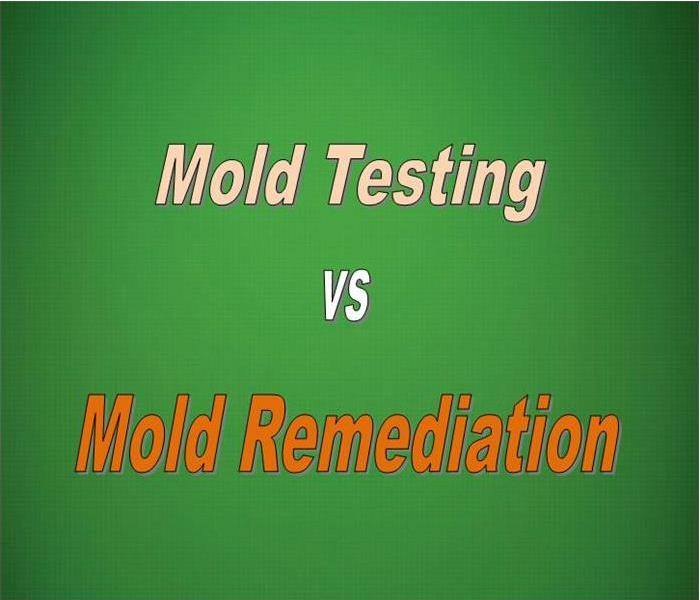 Mold Remediation Mold Remediation And Mold Testing In Florence