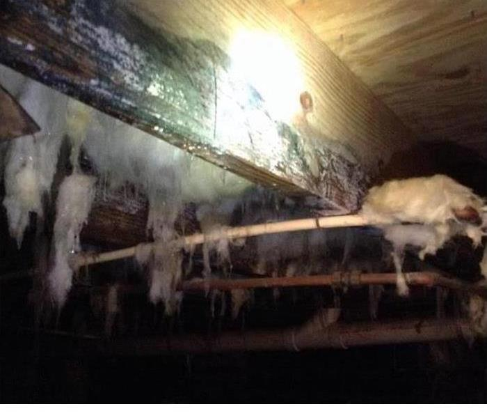Mold Remediation Crawlspace Moisture And Mold