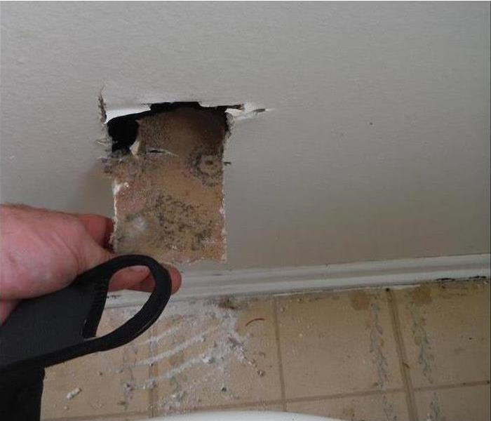 Mold Remediation Is Mold Hiding In Your Home?