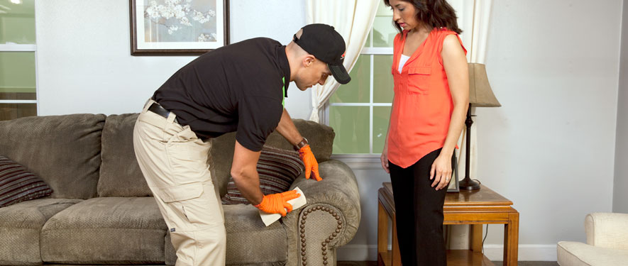 Florence, AL carpet upholstery cleaning